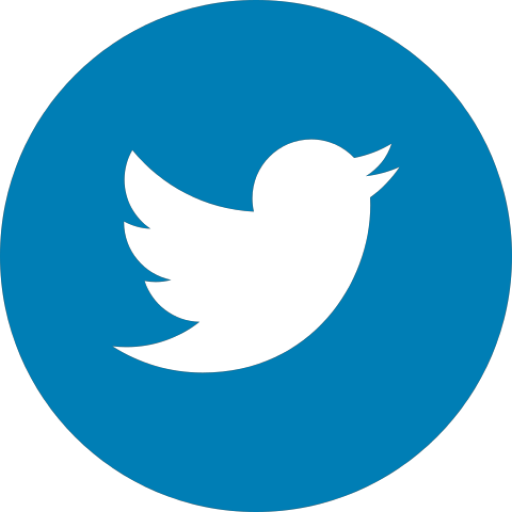 logo-twitter-footer-snof