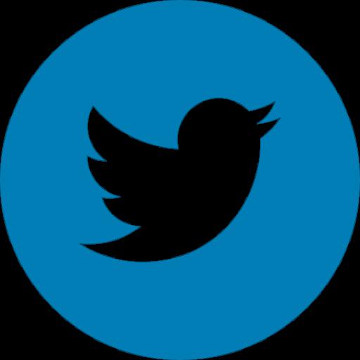 logo-twitter-footer-snof